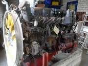 DAF - M-34631 REBUILT ENGINE - Motor