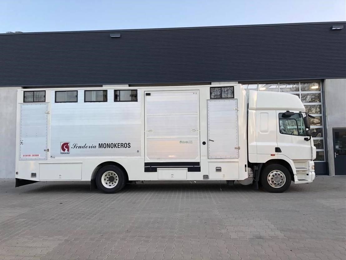 paardenvrachtwagen DAF CF 85 DAF CF 85.360 4x2 met 6-paards paardenbak 2007