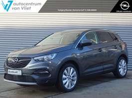 suv wagen Opel Grandland X 1.5 CDTi Business Executive Navi | Parkeerhulp | Climate Contr. 2020