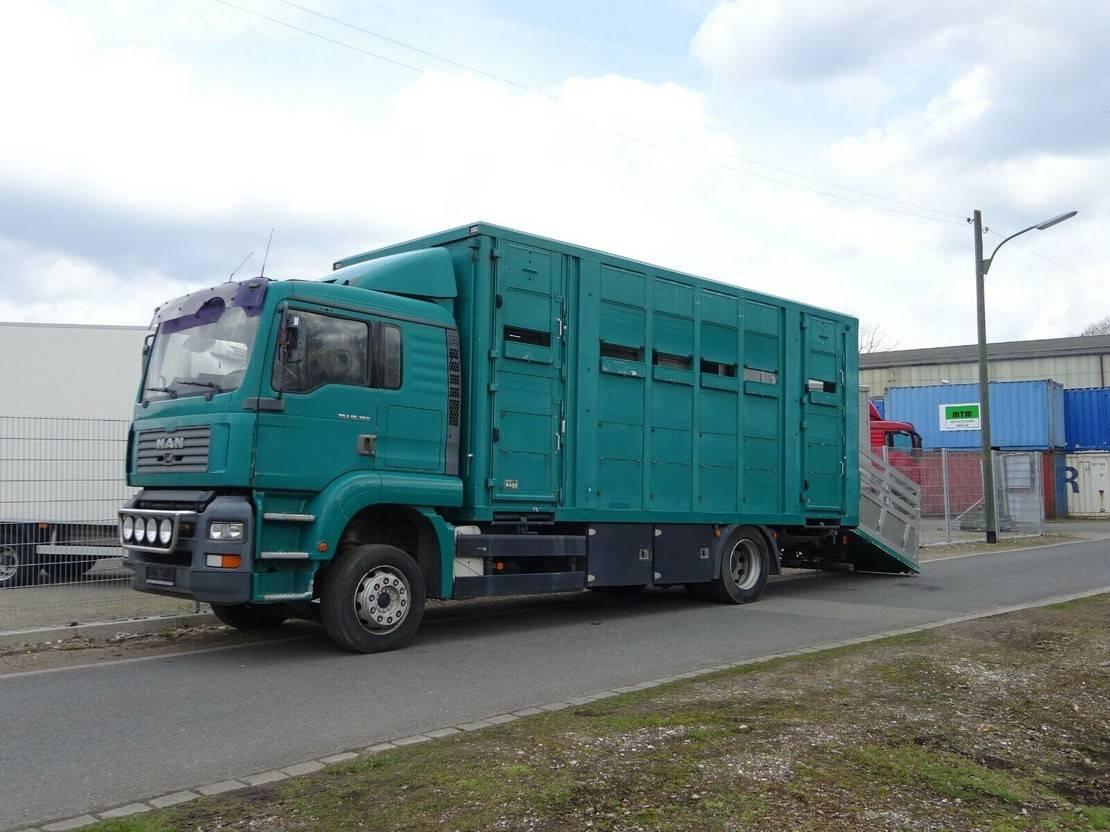 paardenvrachtwagen MAN TGA 18 FG / LL 2003