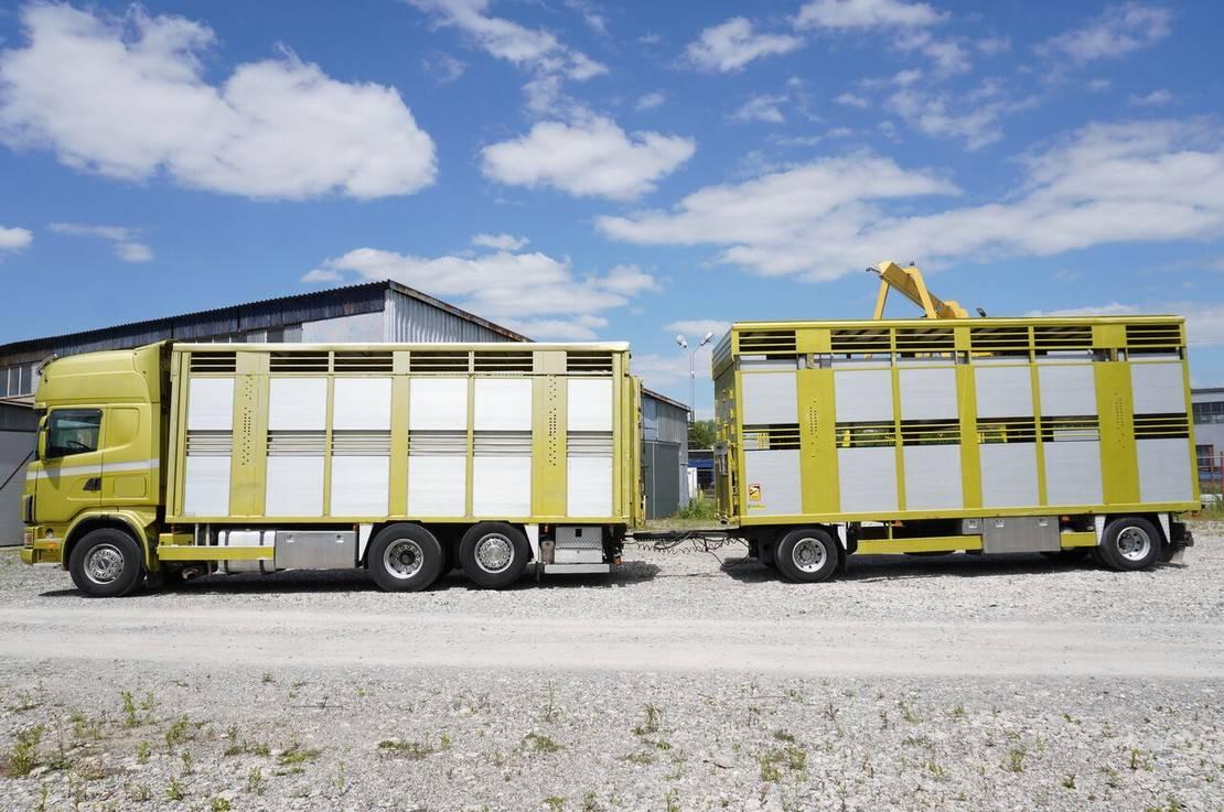 paardenvrachtwagen Scania R164 V8, 6x2, 2 hydraulic decks, 70m2 , live stock 2003