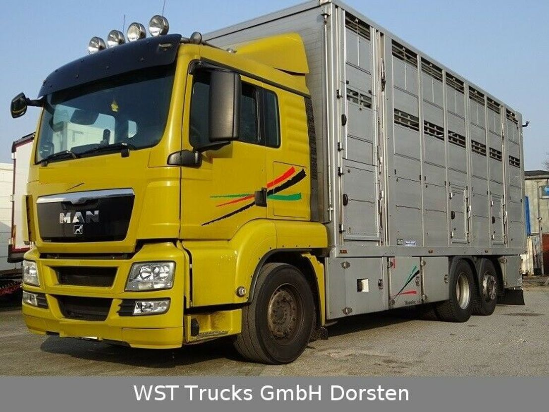 paardenvrachtwagen MAN TGX 26 LX Menke 3 Stock 2012