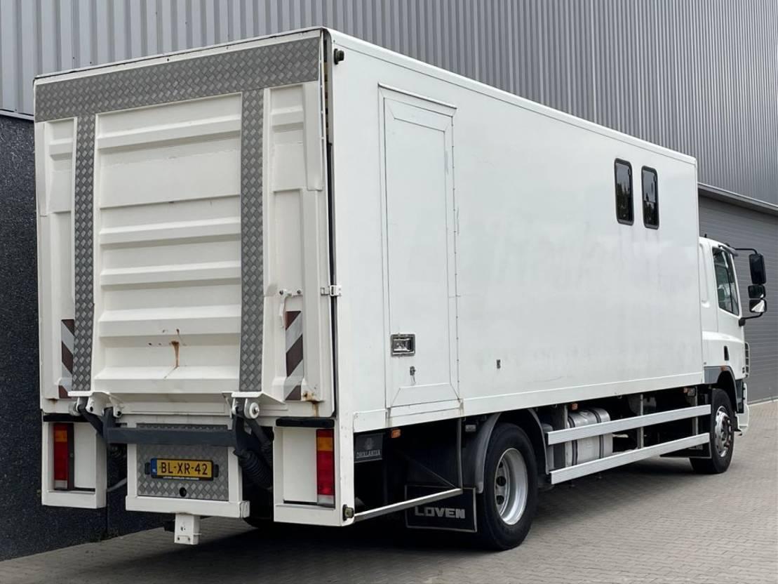 paardenvrachtwagen DAF CF65-180 / Paardenvervoer / Manual / Nieuwe APK / NL Truck 2002