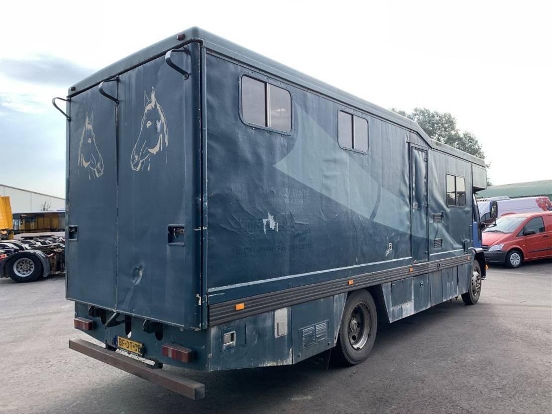 paardenvrachtwagen Ford 915 - Horse truck - 40.019 1989